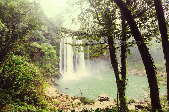 Waterfall in Mexico - Stock Photo - Images