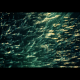 Cinematic Particles - VideoHive Item for Sale