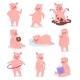 Cartoon Pig Vectors
