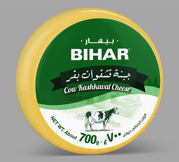 Bihar Cheese - Circular shape - 3DOcean Item for Sale