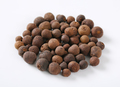 whole allspice berries - PhotoDune Item for Sale