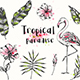Summer Tropical Design Elements - GraphicRiver Item for Sale