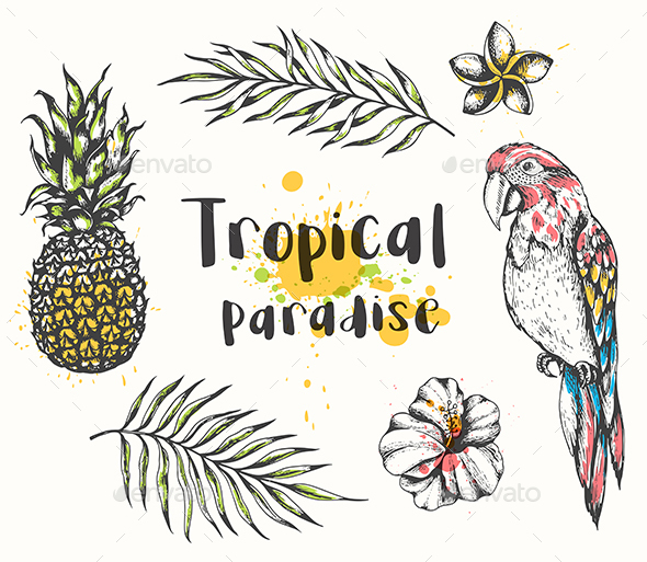 Parrot and Tropical Plants - Animals Characters