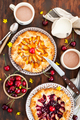 Rustic open pies with apricots and raspberry (french galettes) - PhotoDune Item for Sale