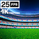 White Flying On Grass In Stadium Night 4K - VideoHive Item for Sale