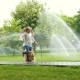 Girls Playing with the Dog at the Park Lawn with Pouring Sprinklers - VideoHive Item for Sale