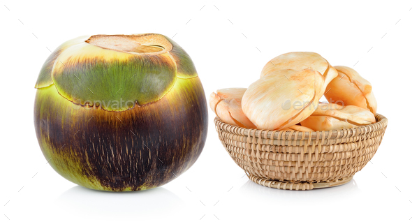 Asian Palmyra palm, Toddy palm, Sugar palm on white background - Stock Photo - Images