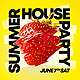 Summer House Party - GraphicRiver Item for Sale