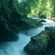 Forest Rocks with a Roaring Stream Running Through Them - VideoHive Item for Sale