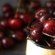 Sweet Fresh Cherries with Dew Drops - VideoHive Item for Sale