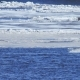 Ice Floe Floats in Water Fragments of Ice on the River in Spring Ice Drift - VideoHive Item for Sale