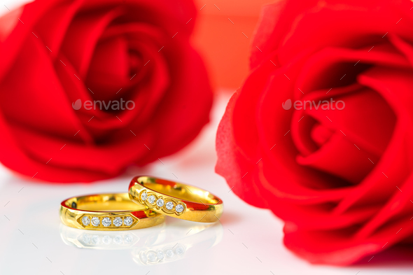 Red roses and gold rings on white_-11 - Stock Photo - Images
