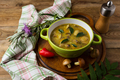 Homemade mushroom soup in the green plate - PhotoDune Item for Sale