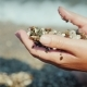 Female Hands Hold a Handful of Wet Pebbles. Rest on the Sea, Meditation Concept