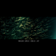 Dark Green Particles - VideoHive Item for Sale