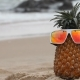 Cheerful Pineapple on Vacation - VideoHive Item for Sale