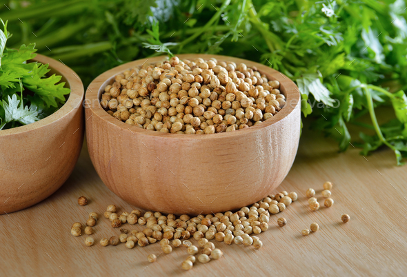 Coriander seeds - Stock Photo - Images