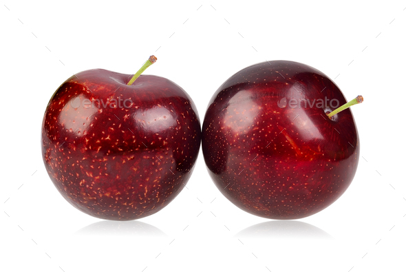 red cherry plum isolated on white background - Stock Photo - Images