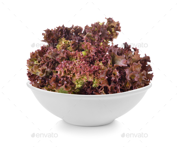 Fresh red lettuce in a bowl on white background - Stock Photo - Images