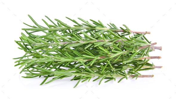 Rosemary isolated on white background - Stock Photo - Images