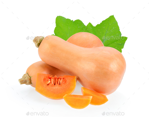 butternut squash isolated on white background - Stock Photo - Images