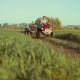Group of People Driving Off-road with Quad Bike or ATV - VideoHive Item for Sale