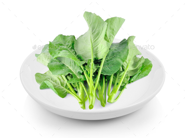 Chinese kale in plate on white background - Stock Photo - Images