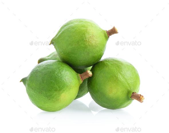 fresh macadamia nuts isolated on white background. - Stock Photo - Images