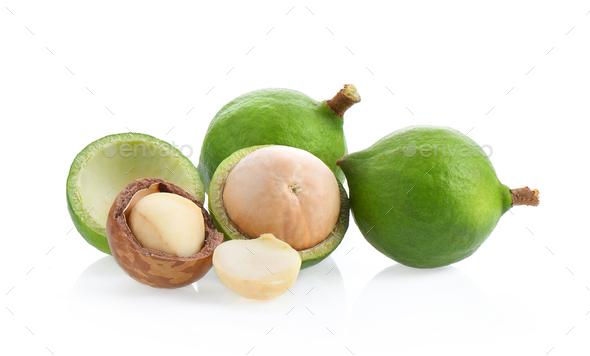 macadamia nuts isolated on white background. - Stock Photo - Images
