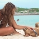 Young Woman Stroking and Playing with Dog on Sea Beach. Beautiful Woman Petting Dog on Summer Beach - VideoHive Item for Sale