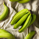 Organic Raw Green Unripe Bananas - PhotoDune Item for Sale