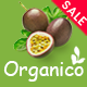 Organico - Food Market Responsive WooCommerce WordPress Theme - ThemeForest Item for Sale