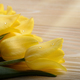 Bouquet of yellow tulips on natural wooden background with space - PhotoDune Item for Sale