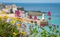 Colorful flowers and St Ives - PhotoDune Item for Sale