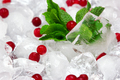 Frozen cowberry with fresh mint leaves on ice cubes - PhotoDune Item for Sale