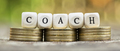 Business life coaching concept, web banner idea - PhotoDune Item for Sale