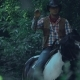 Rider on a Horse in a Shady Forest - VideoHive Item for Sale