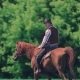 Cowboy Rider on the Horse Goes Into the Distance, Then Stops and Looks Into the Camera - VideoHive Item for Sale
