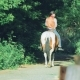 Rider on a Horse at the Ranch Drives Off Into the Distance - VideoHive Item for Sale