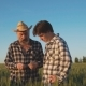 The Old Farmer Holds Wheat Ear and Explains His Son About Harvest - VideoHive Item for Sale