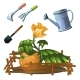 A Set of Garden Tools To Take Care of a Growing