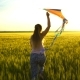 Girl Running Around with a Kite on the Field. - VideoHive Item for Sale