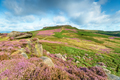 Summer at Carl Wark in the Derbyshire Peak District, looking towards Higger Tor - PhotoDune Item for Sale