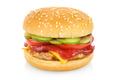 Hamburger isolated on white - PhotoDune Item for Sale