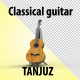 Classical Guitar - VideoHive Item for Sale