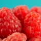 Fresh and Sweet Raspberries - VideoHive Item for Sale
