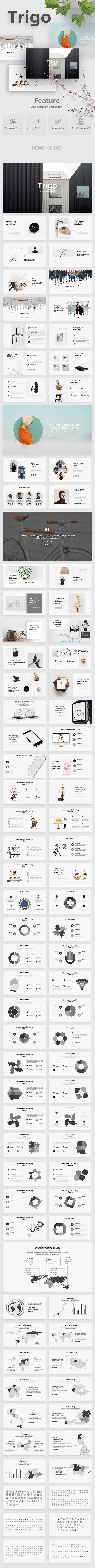 Trigo Minimal Powerpoint Template - Creative PowerPoint Templates