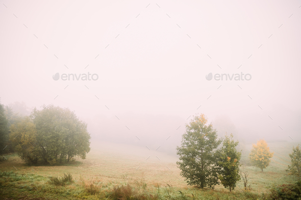 Misty Landscape. Morning Fog Over Misty Meadow. Autumn Nature Of - Stock Photo - Images