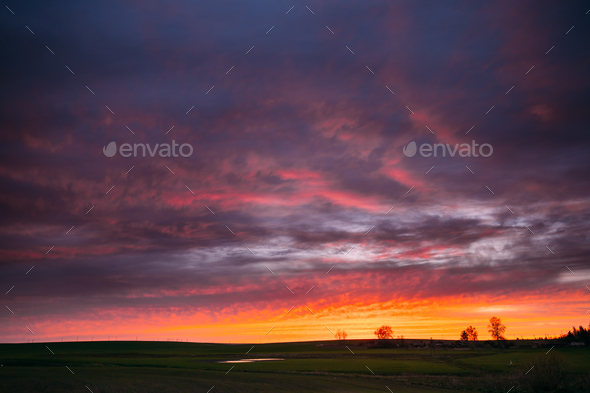 Spring Field In Evening Sunset. Natural Bright Dramatic Sky Pink - Stock Photo - Images