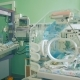 Neonatal Intensive Care Unit with Toddlers in It - VideoHive Item for Sale